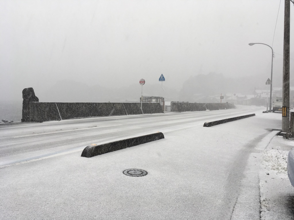 宇和島 雪
